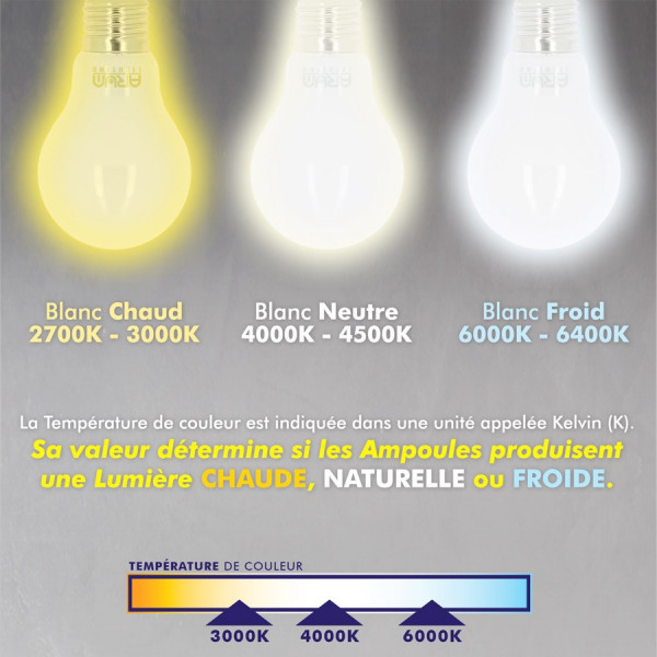 Lot de 10 Ampoules LED E27 8W eq 60W 806m GLASS sans radiateur