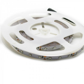Rouleau de ruban LED 5Mètres SMD3528 blanc froid - 60LEDs IP20