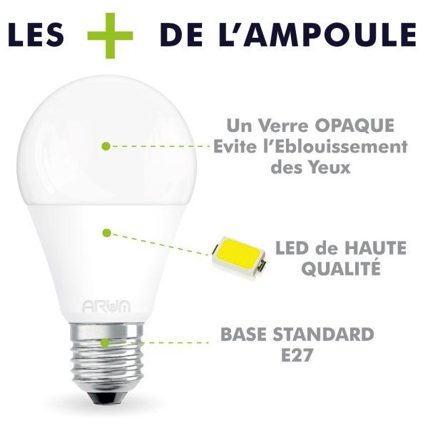 Lot de 5 Ampoules LED E27 11W 1055 Lumens