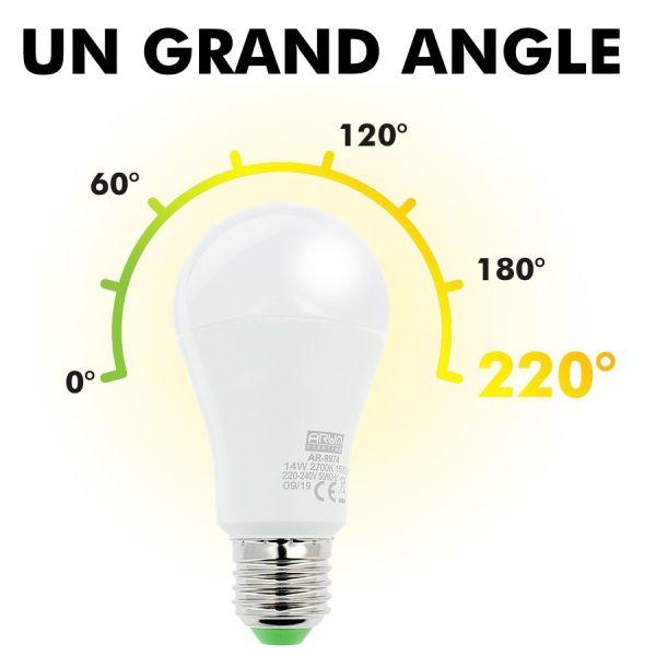 LOT de 5 AMPOULES LED E27 14W Eq 100W