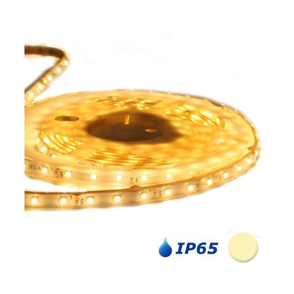 Striscia led 5 metri 60L / M 3528 bianco caldo IP65