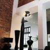 Plafonnier RIDLEY Noir et Or 3 Têtes avec Ampoule GU10 LED Blanc Chaud