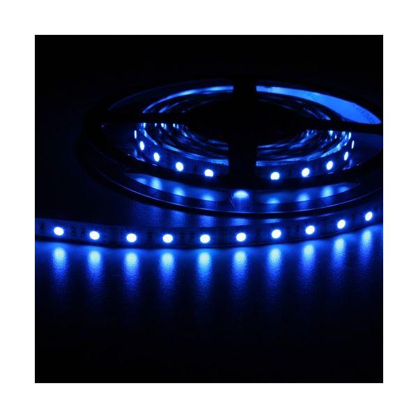 Strip led SMD5050 5M forte puissance bleu