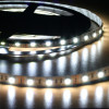 5M strip led SMD5050 forte puissance blanc IP20