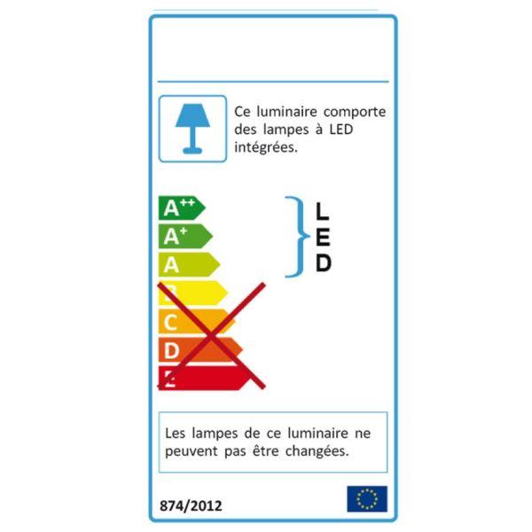 Applique torche CASTELLANE inox LED 900 Lumens