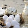 Guirlande boules de velours blanches
