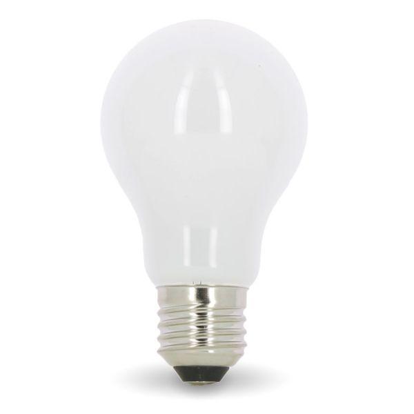 Ampoule LED E27 10W Eq 75W MAT En verre