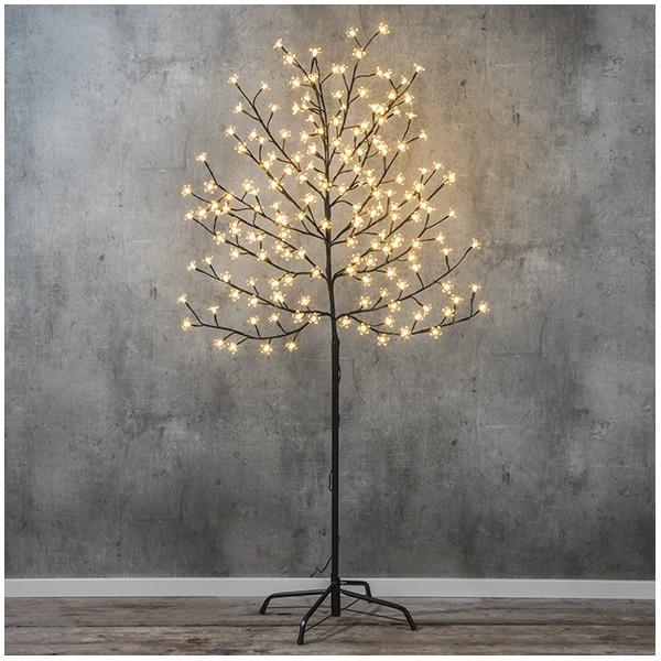 Cerisier lumineux